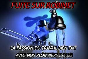 Réparation fuite robinet par le service dépannage robinetterie Paris 14